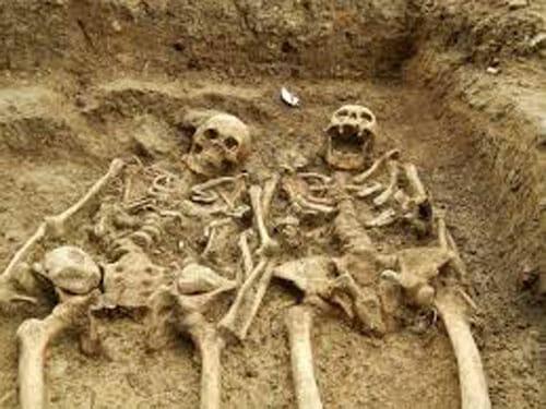 skeletal-remains