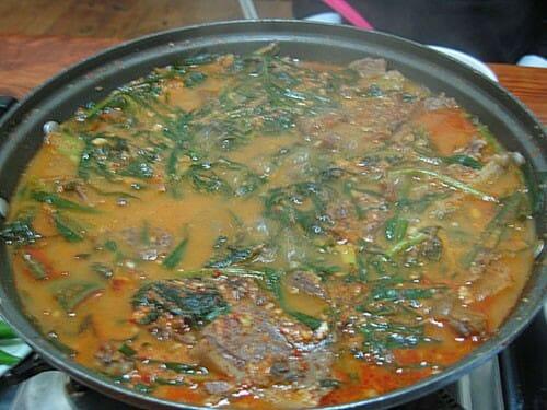 Dog-soup1