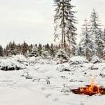 Groundhogs, Saints, and Bonfires: February Festivals of Spring